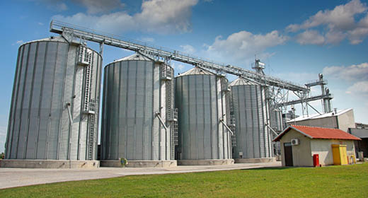 Grain and Feed Alliance Bucket.jpg